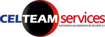 CELTEAM SERVICES